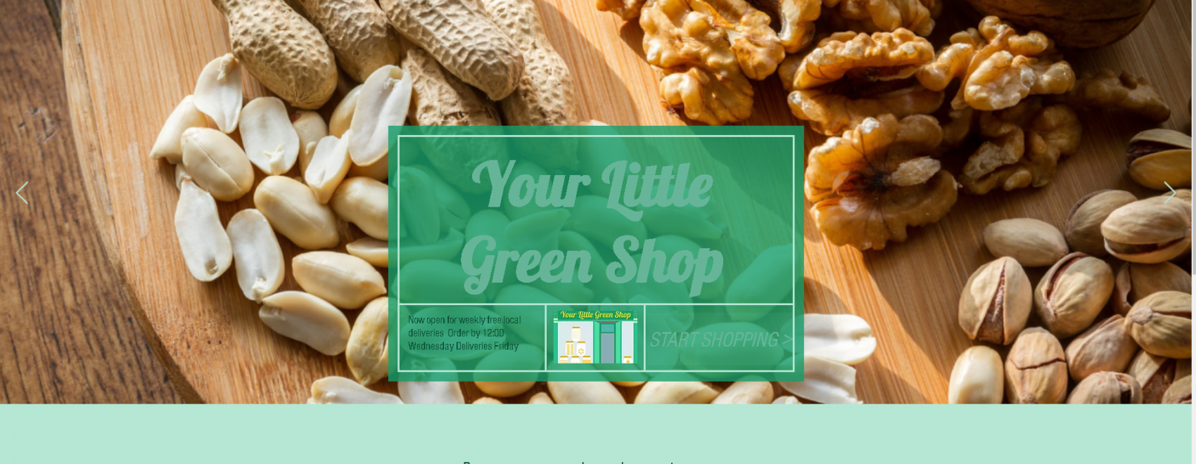 Picture of some nuts on teh front page of Your Little Green Shops website